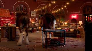 Budweiser | Live From The Clydesdales' Stables for Super Bowl 52 | #ThisBudsForYou