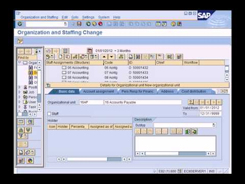 Sap Hcm Hr Overview Youtube