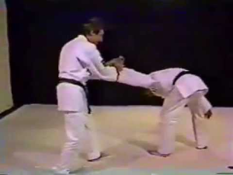 Aikido from scratch to perfection