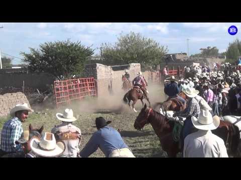 Gran coleadera en La Soledad Canatlan Dgo. Mex. 5 oct 14