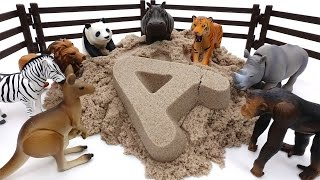 Animals Sand Bath Time~! Learn Animal Names with Kinetic Sand