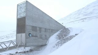 See inside the 'Doomsday' seed vault