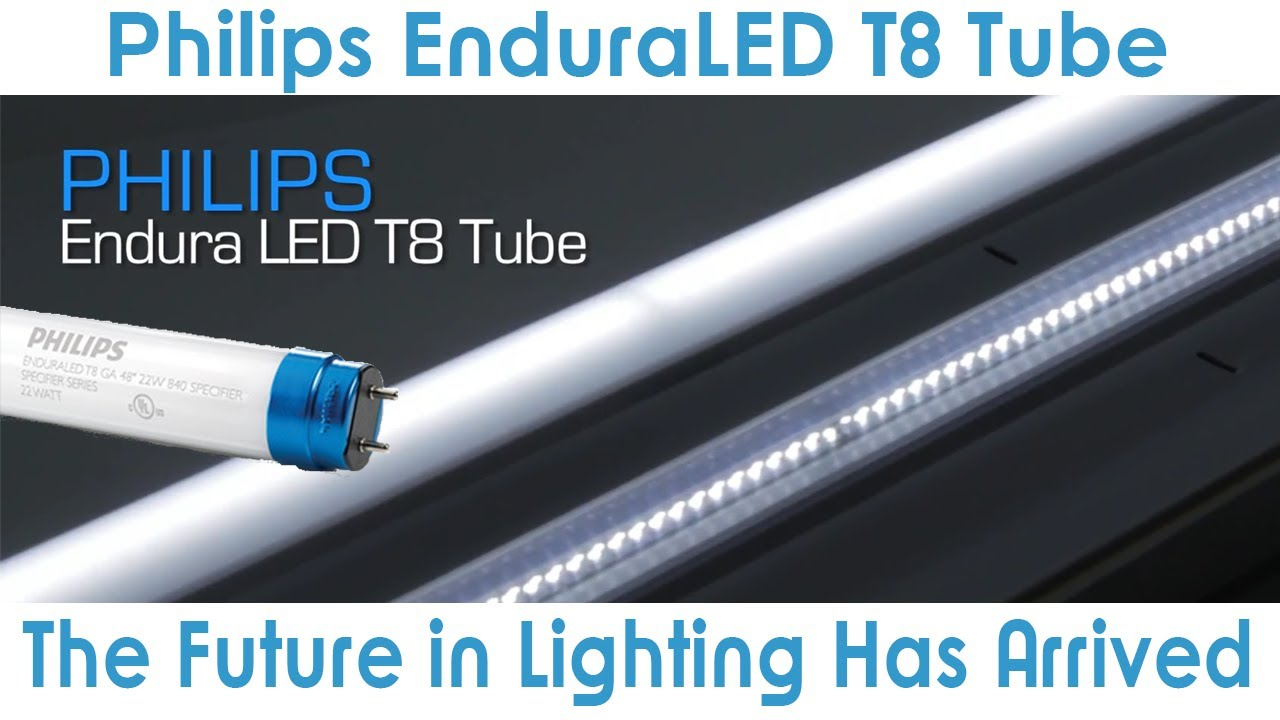 Goodmart Philips Enduraled T8 Lamp Is An Excellent Led
