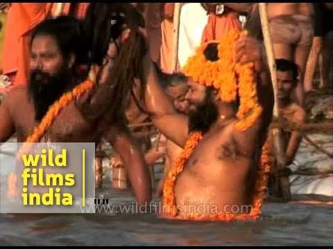 Naga Sadhus or naked Hindu Holy men bathe on the banks of the Ganges river