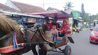 BELAJAR BERNYANYI LAGU ANAK INDONESIA - NAIK DELMAN