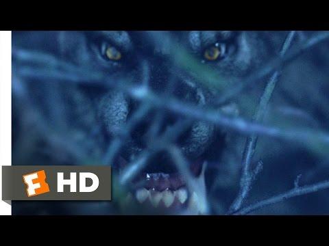 Van Helsing (1/10) Movie CLIP - Werewolf on the Loose (2004) HD