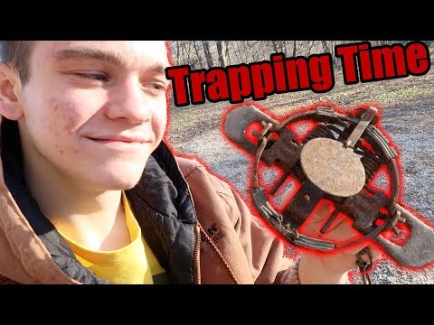 It's Trapping Time!