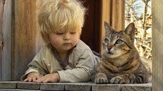 Les véritables amitiés entre des chats et des bébés !