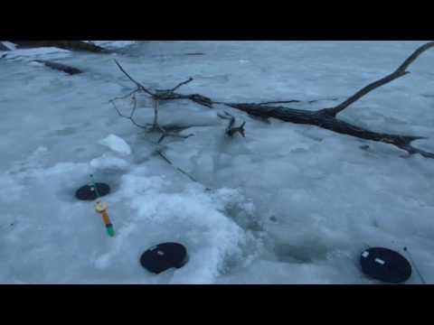 рыбалка в муроме белгород