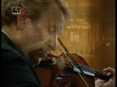 Johannes Brahms, Violin Concerto in D major, Op. 77, part 1 - Allegro non troppo /3/