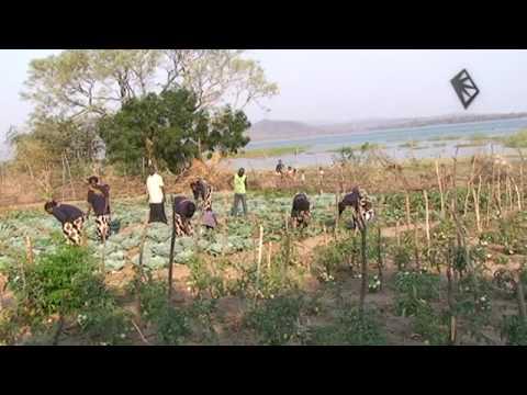Spark Africa - Treadle pump revolution in rural Zambia - Episode 3