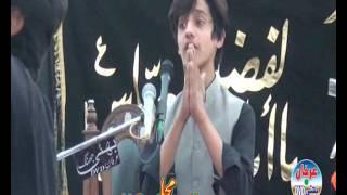 Ali Abbas Askry Majlis 12 Safar 2016 Muza Thata Siyalan Muzafar Gurh