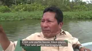 Ecuador: la forêt empoisonnée