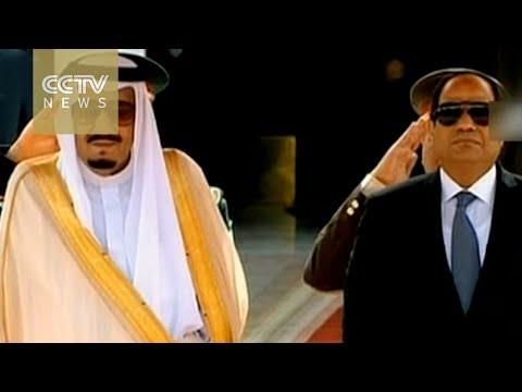 Saudi King Salman meets with Egyptian President al Sisi