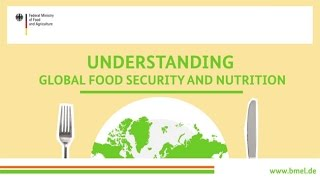 """""""Understanding global food security and nutrition"""""""