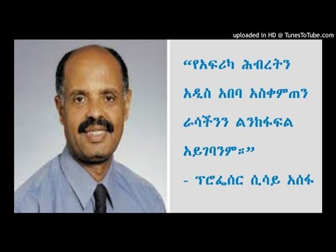 Interview With Prof Sisay Asefa - SBS Amharic