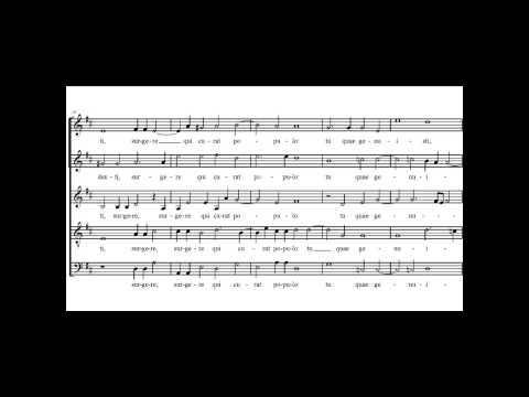 Лассо, Орландо ди - Alma redemptoris mater a 6 (I)