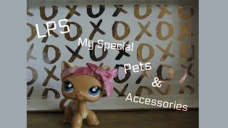 LPS Special Pets and Accessories!