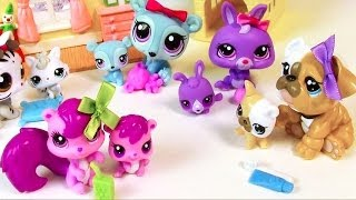 Mommy and Baby Littlest Pet Shop HAUL LPS Opening toy review