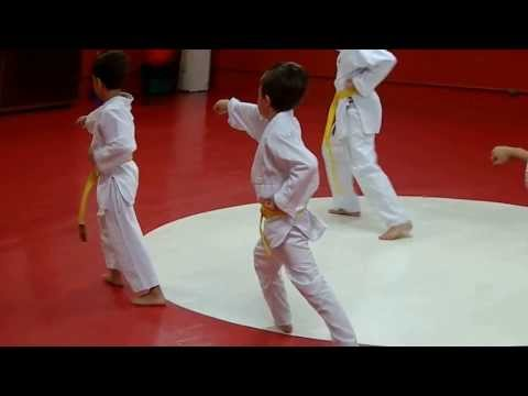 Thomas Karate Kata Heian Shodan video