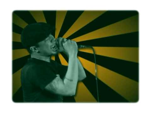 download lagu Shaggydog - Kembali Berdansa gratis