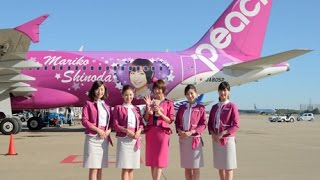 download lagu Fly From Tokyo To Okinawa Island By Peach Airline gratis