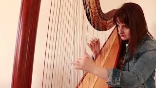 Jonas Brothers - Cool (Harp Cover)