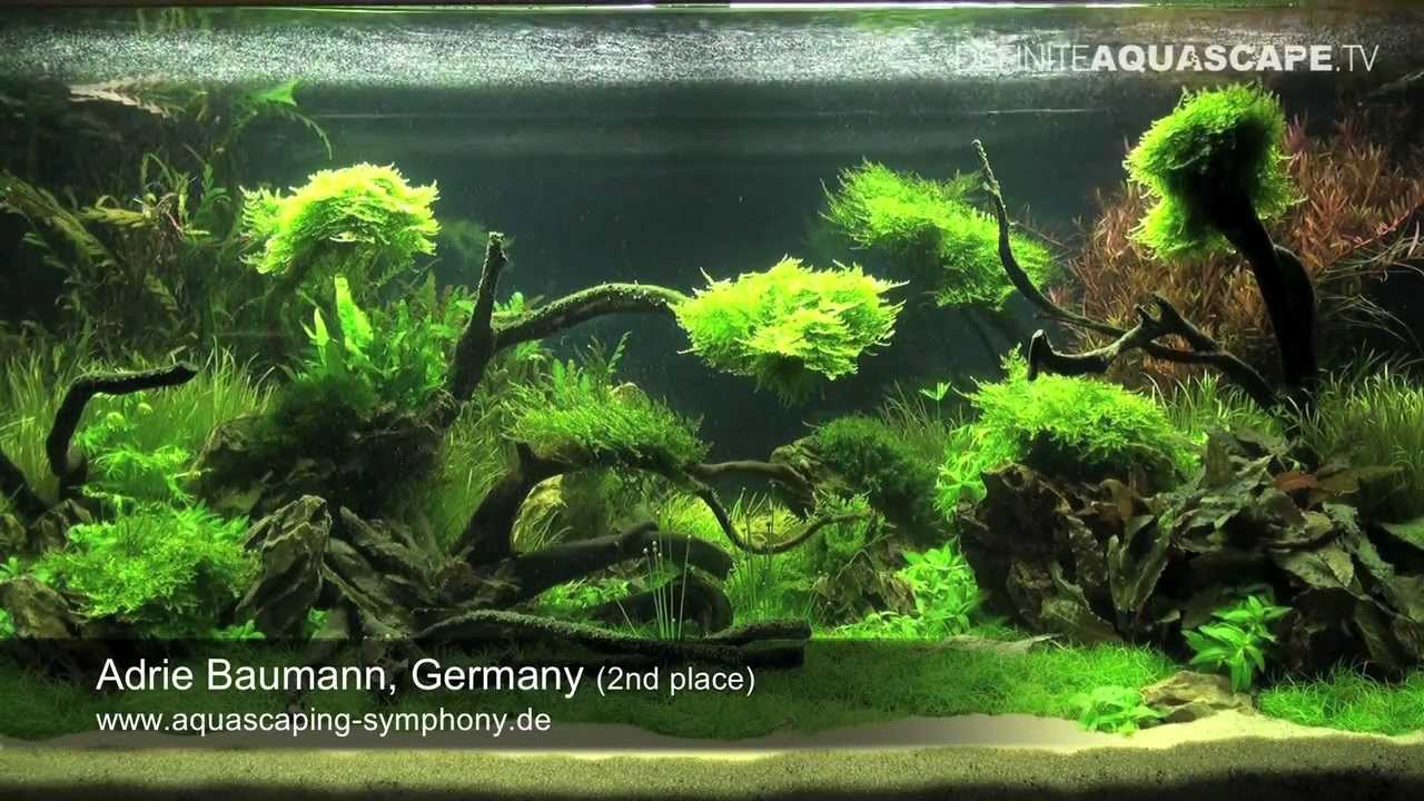 Aquascape - The Art of the Planted Aquarium 2011, Adrie ...