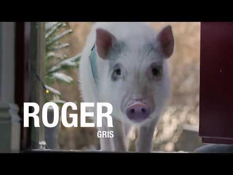Säg Hej Till Roger