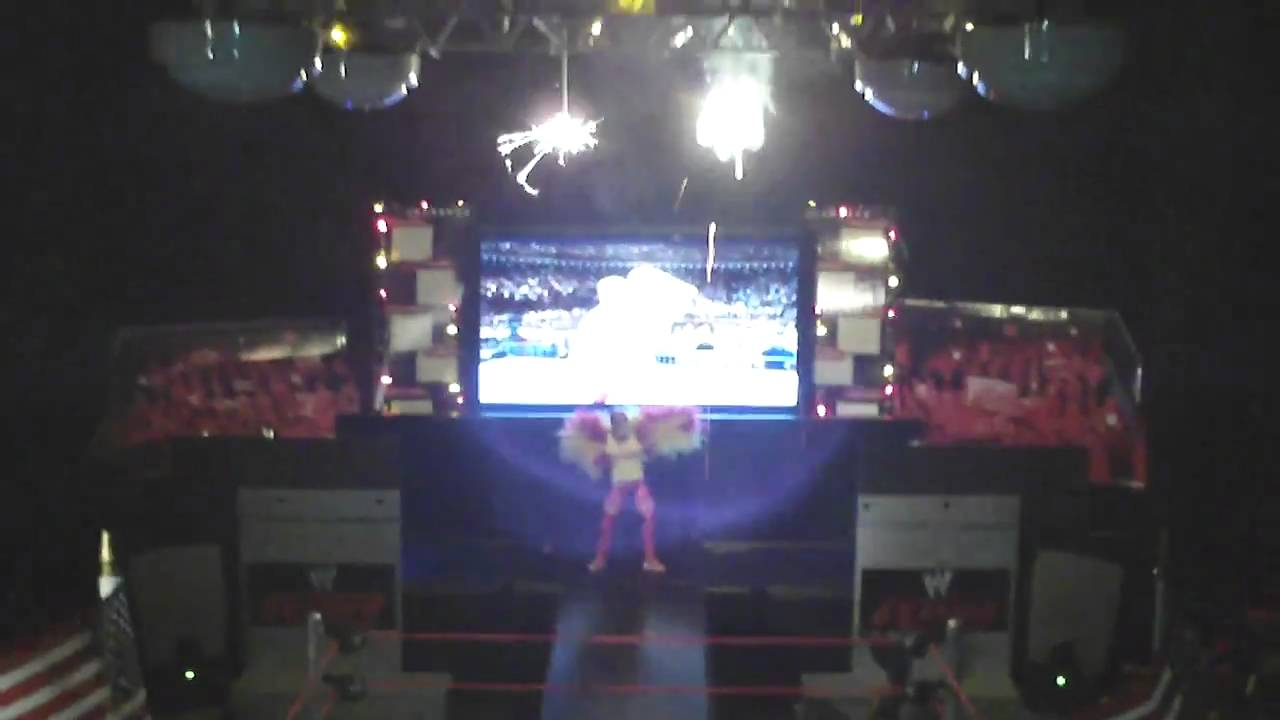 Best Wrestling Figure Arena In The World Hulk Hogan