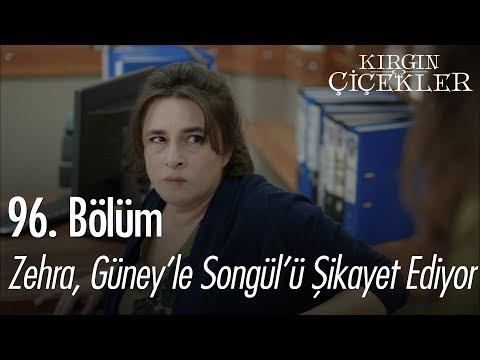 Zehra, Songül'le Güney'i şikayet ediyor - Kırgın Çiçekler 96. Bölüm