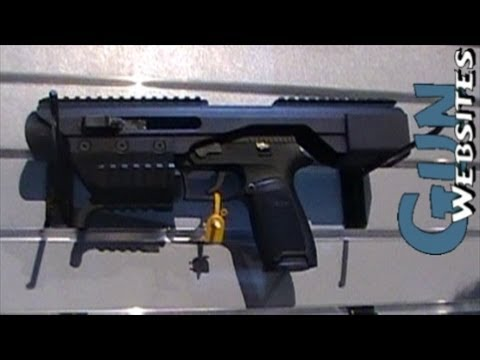 Sig ACP Pistol Carbine