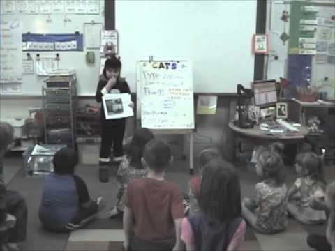 sofia's cat presentation/presentacion en el colegio sobre los gatos
