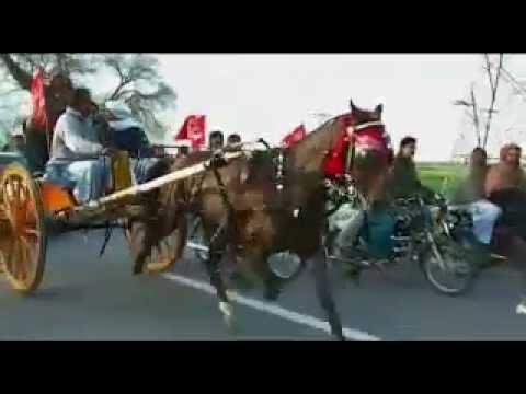 Lal Badshah Champion video