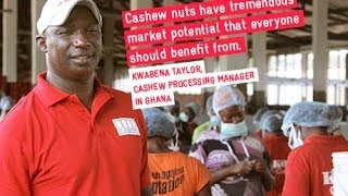 Faces & Stories, Manager of a Cashew Processing Company in Ghana