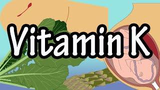 Vitamin K , Animated medical biochemistry