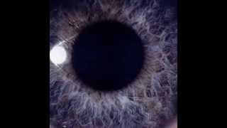 Watch Dan Swano Add Reality video