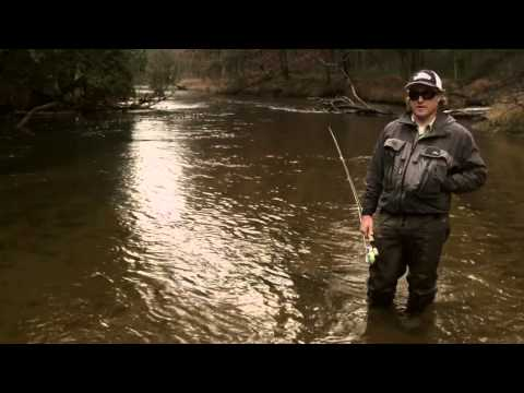 Steelhead Fishing in Michigan