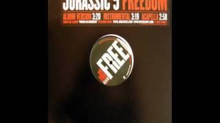 Watch Jurassic 5 Freedom video
