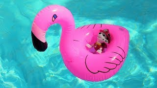 PAW Patrol toys in the waterpark. Videos for kids with toys.