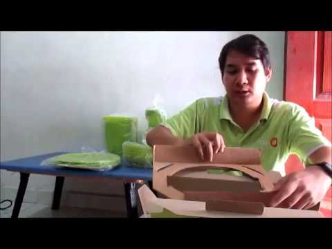 JomtapauwehTV: Tupperware Blossom Serveware Set