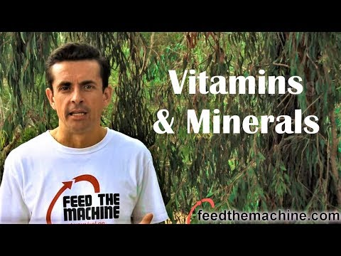 VItamins & Minerals - Your foundation to good health and athletic performance