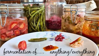 Fermentation of anything and everything | Fight Corona | Probiotic Sauerkraut | Fermented Salsa