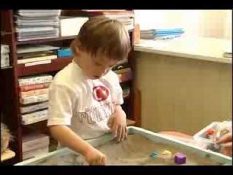 Муниципальная модель развития дошкольного образования г. Кемерово