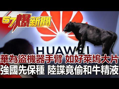 台灣-57爆新聞-20190130-華為盜機器手臂 如好萊塢大片 強國先保種 陸諜竟偷和牛精液