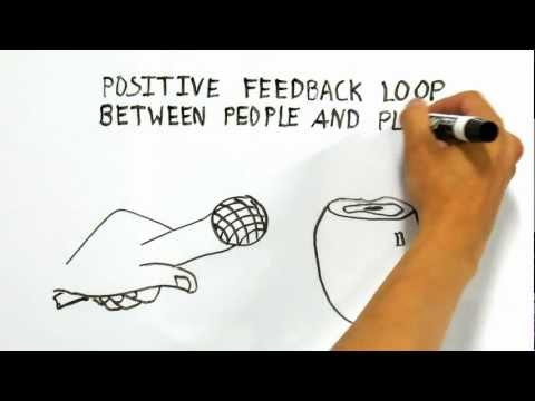 Whiteboard Animations Whiteboard Animated Videos