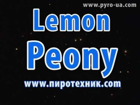 Fireworks Peony lemon lemon peony http://www.pyro-ua.com