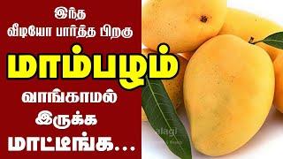 மாம்பழம் கண்டிப்பாக சாப்பிடனும்..ஏன்? தெரியுமா?   Top 10 Health Benefits of Mango Fruit  Health Tips