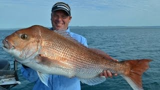 PORT WELSHPOOL SNAPPER REVISITED - YouFishTV