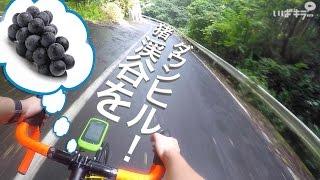 【けんたさん】「ゆるポタグルメライド」筑波山をダウンヒルして「ぶどう狩り」をしてきた!